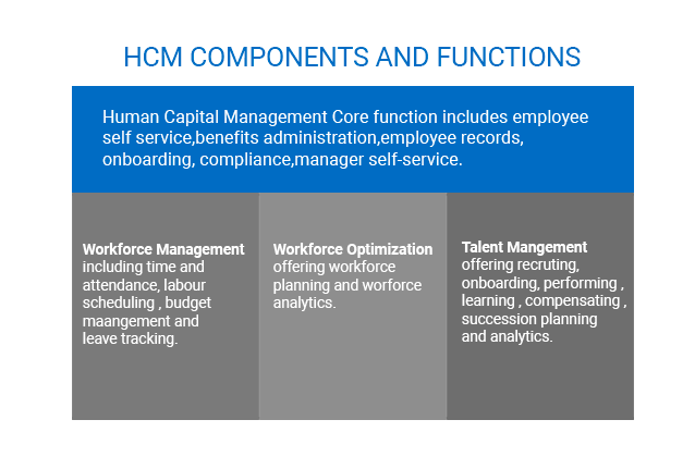 scope-and-function-of-hcm-software-in-business-1-openhrms